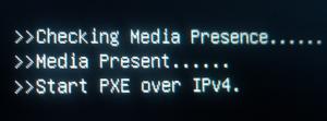 Checking media presence.....