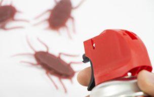 簡単にできる害虫対策とおすすめグッズ 2020